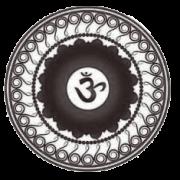 Icon eins